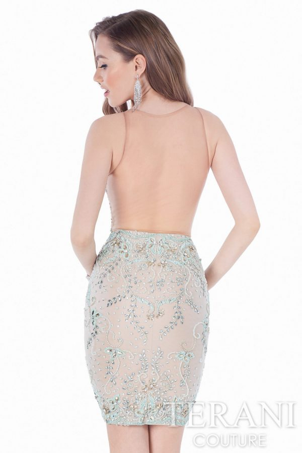 1621H1051 Taupe Nude Back