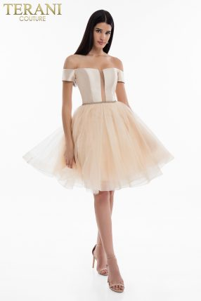62a19540cfd Official Terani Couture  Long   short Homecoming Dresses 2019