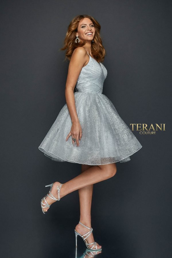 Airy Spider Tulle with Pleated Bodice and Full Skirt - 1921H0334